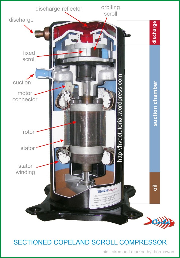 compressors  mechanism