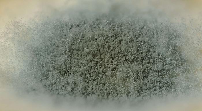 dehumidifier reviews: advantages of dehumidifiers