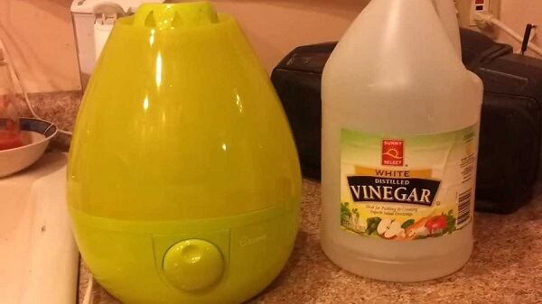 how to clean a humidifier with vinegar