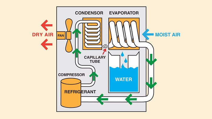 How does a dehumidifier work illustration